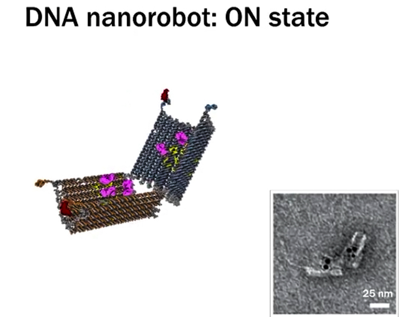 4_DNA-nanobots
