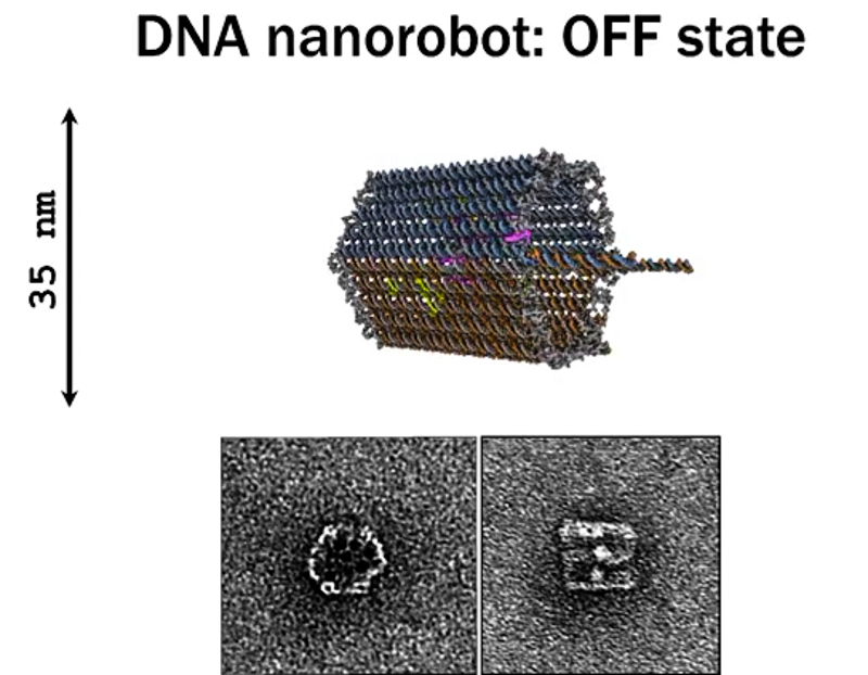5_DNA-nanobots