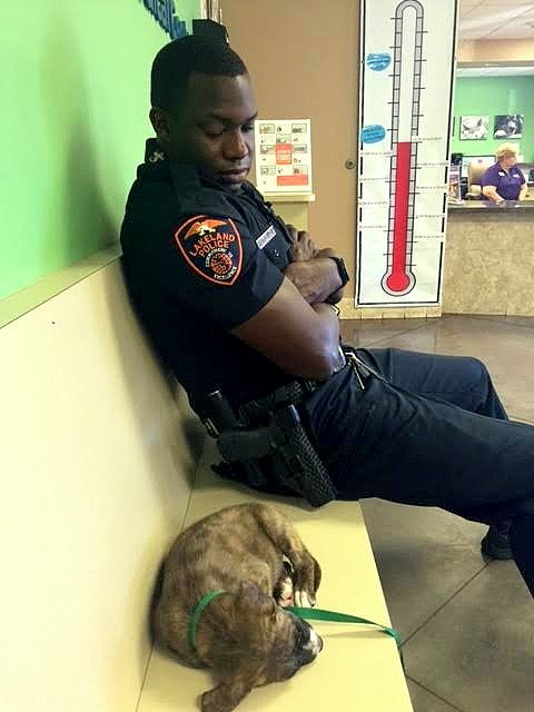 5.24.16-Officer-Refuses-to-Leave-Stray-Puppy's-Side-Until-He-Knows-She's-Safe3