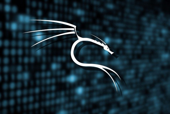 Download Basics of Kali linux PDF – Anonymous Portugal